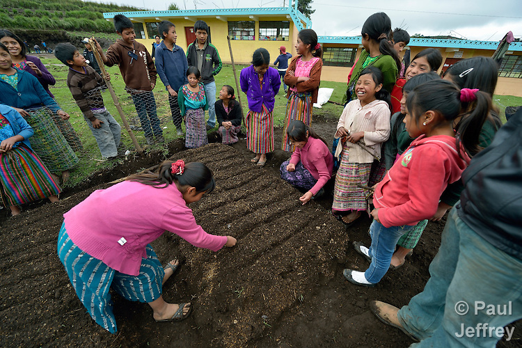 School children prepare garden plots and plant vegetables in San Jose la Frontera, a small Mam-speaking Maya village in Comitancillo, Guatemala. The program is jointly sponsored by the community's school and the Maya Mam Association for Investigation and Development (AMMID).