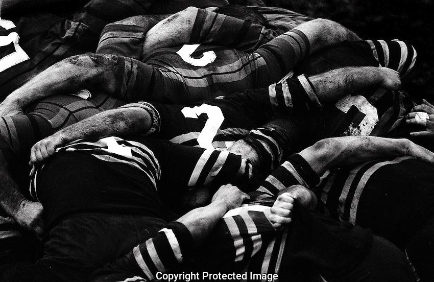 Club rugby
