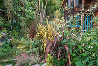Plant collector's garden; Roger Raiche Berkeley Maybeck Cottage garden