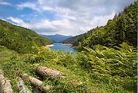 Lake Zaovine, Bjelusa