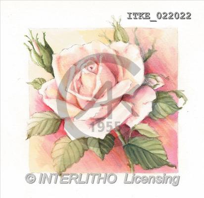 Isabella, FLOWERS, paintings(ITKE022022,#F#) Blumen, flores, illustrations, pinturas ,everyday