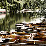 Punts moored by river bank, Cambridge, Cambridgeshire, UK