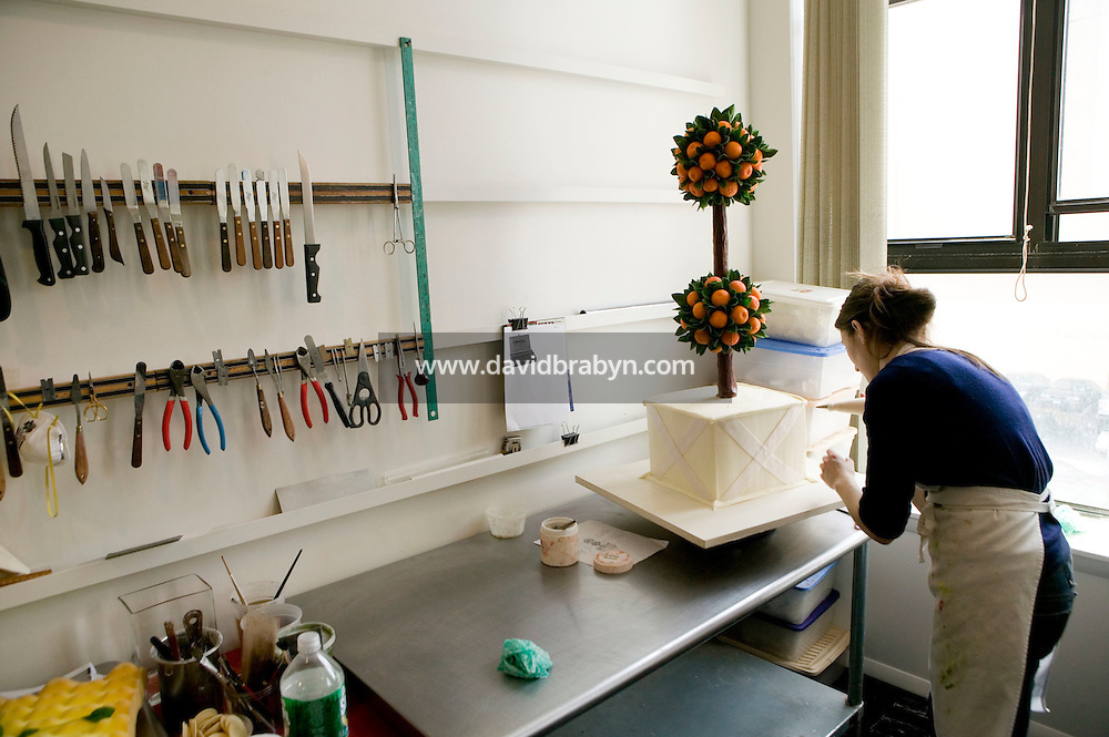 6 April 2006 - New York City, NY - Cake decorator, Emily Roediger works on a cake topiary at Sylvia Weinstock Cakes in New York City, USA, 6 April 2006. The owner, Sylvia Weinstock is known as the queen of wedding cakes in New York.