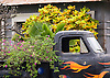 A pickup truck planter in the town of Hanapepe, on the island of Kauai, Hawaii. Photo by Kevin J. Miyazaki/Redux