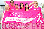 Kenmare is turning pink to help raise funds for Breast Cancer with plans underway for the towns first ever Pink Ribbon Walk to take place in May 2014. <br /> Front L-R Sandra Bias, Margaret McCarthy, Tracey Baker and Lisa Ragosa. <br /> Back L-R Mike Brosnan and Paula Tiller.