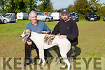 "Enjoying the the Kilflynn Coursing on monday were Batt Maher and John Maher with"" Blackpool Kyle."" competing in the Lystoll Lodge Nursing Home Stake"