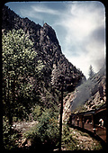 Excursion train with D&amp;RGW #361 C-21 in Black Canyon - tree to left.<br /> D&amp;RGW  Black Canyon, CO  Taken by Maxwell, John W.