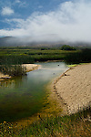 Fog over the Carmel River, Carmel River State Beach, Carmel, California