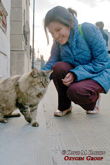 Person Petting Cat At La Recoleta Cemetery