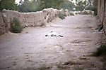 A Taliban fighter lies dead after being shot by Canadian soldiers with the Royal 22nd Regiment in the village of Zalakhan in Kandahar province, Afghanistan. Aug. 8, 2009. DREW BROWN/STARS AND STRIPES
