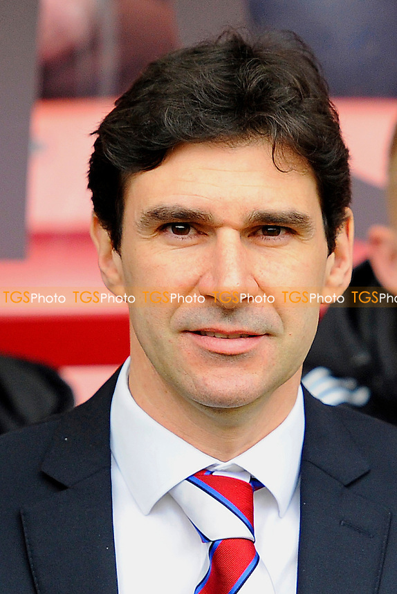 Middlesbrough Manager Altor Karanka - AFC Bournemouth vs Middlesbrough - Sky Bet Championship Football at the Goldsands Stadium, Bournemouth, Dorset - 21/03/15 - MANDATORY CREDIT: Denis Murphy/TGSPHOTO - Self billing applies where appropriate - contact@tgsphoto.co.uk - NO UNPAID USE
