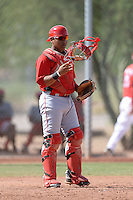 Cincinnati Reds catcher Chad Tromp (66) during an Instructional League game against the Texas Rangers on October 7, 2013 at Goodyear Training Complex in Goodyear, Arizona.  (Mike Janes/Four Seam Images)
