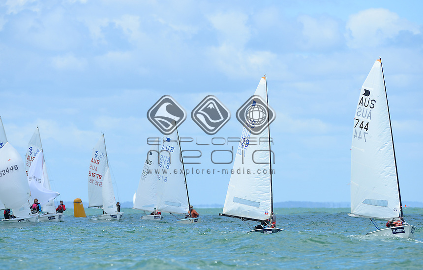 OK Dinghy / Fleet racing action<br /> 2013 ISAF Sailing World Cup - Melbourne<br /> Sail Melbourne - The Asia Pacific Regatta<br /> Sandringham Yacht Club, Victoria<br /> December 1st - 8th 2013<br /> © Sport the library / Jeff Crow