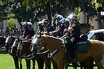 POLICE on HORSEBACK SEND a MESSAGE to ANY WHO WOULD DETER the PEACE DURING the 2008 DEMOCRATIC CONVENTION in DENVER COLORADO (3)