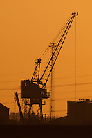 A View of a Crane at Sunset From Elmley Marshes, Isle of Sheppey, Kent