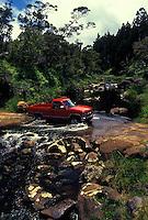 Kawaikoi Stream, at Sugi Grove, near Kokee State park. Adjacent to campground.