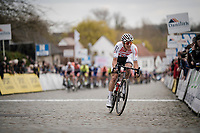 Dries De Bondt (BEL/Corendon-Circus)<br /> <br /> 74th Nokere Koerse 2019 <br /> One day race from Deinze to Nokere / BEL (196km)<br /> <br /> ©kramon