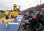 SIOUX FALLS, SD, MAY 20:  Peep and Cagey entertain fans between innings Friday night at the Sioux Falls Stadium.  (Photo by Dave Eggen/Inertia)