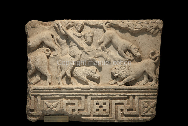 Relief with hunting scene, with a man on horseback with a spear hunting a wild boar and a dog attacking a lion, Hellenistic period, from the Museum Of Apollonia near the Ardenica monastery in Fier, Albania. The museum was opened in 1958 to display artefacts found at the nearby Greek Illyrian archaeological site of Apollonia. Apollonia was an ancient Greek city in Illyria, founded in 588 BC by Greek colonists from Corfu and Corinth. It flourished in the Roman period and declined from the 3rd century AD when its harbour was silted up due to an earthquake. Picture by Manuel Cohen