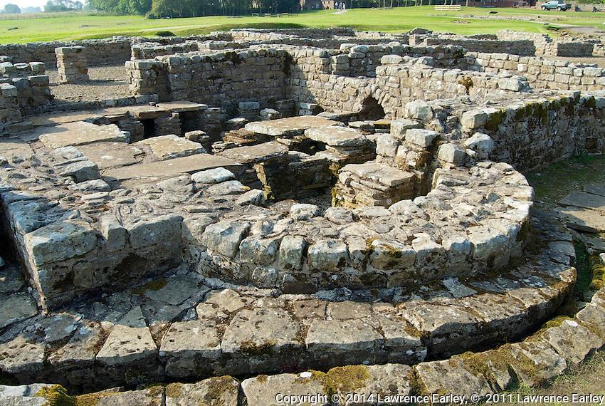 Day 5 - At Vindolanda Fort excavations