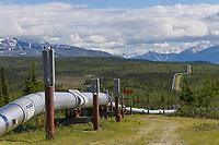 Trans Alaska Oil Pipeline traverses the tundra of interior Alaska, just south of Delta Junction.