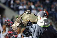 November 07, 2010:  The Seattle Seahawks mascot lead the players out from the tunnel before the game against the New York Giants at Quest Field in Seattle, WA.  New York won 41-7 over Seattle.