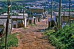 Ruas de terra em São Mateus, São Paulo. 2004. Foto de Juca Martins.