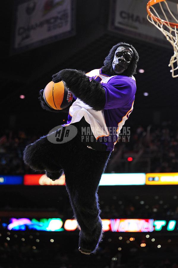 Jan. 26, 2011; Phoenix, AZ, USA; Phoenix Suns Gorilla performs against the Charlotte Bobcats at the US Airways Center. The Bobcats defeated the Suns 114-107. Mandatory Credit: Mark J. Rebilas-