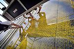 LEIDSCHE RIJN - In Leidsche Rijn worden met zorg, rijk gedecoreerde aluminium platen gemonteerd op een door Van Wijnen gebouwd onderstation voor Prorail. Het door Tjerk en Nienke van de Lune van Movares ontworpen gebouw ziet er uit als een grote versierde doos met  fleurige opdrukken. Met hulp van zgn decallisatieproces zijn fotografische afbeeldingen op de platen aangebracht waarbij dit onderstation wordt opgevrolijkt met okergeel stuk blad op reuzenformaat dat van dichtbij gezien blijkt te zijn opgebouwd uit grafisch bewerkte stukken boomschors.  COPYRIGHT TON BORSBOOM