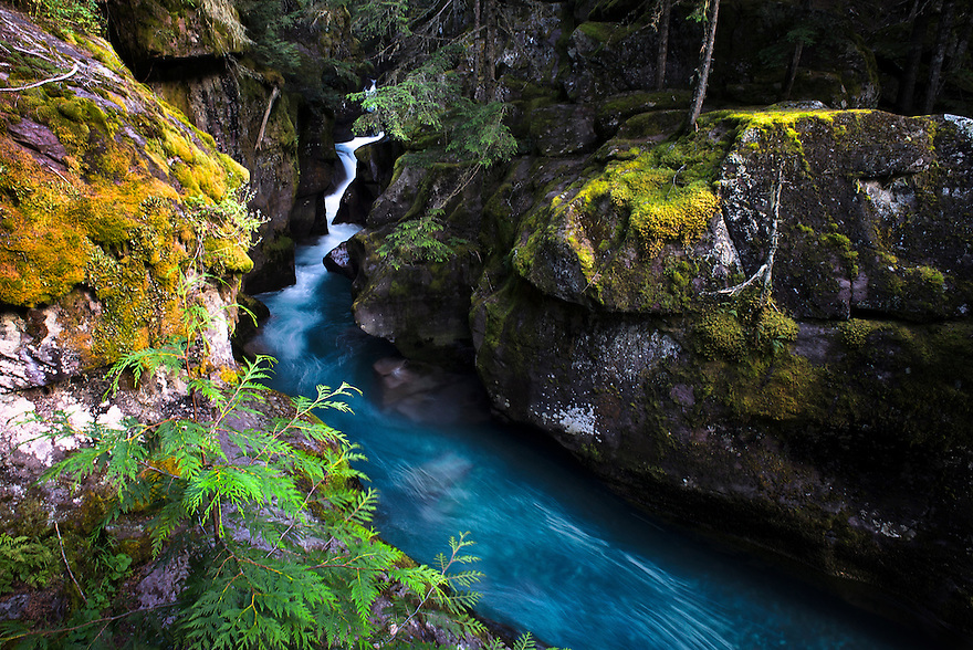 Water rushes through Avalanche Gorge in Glacier National Park.