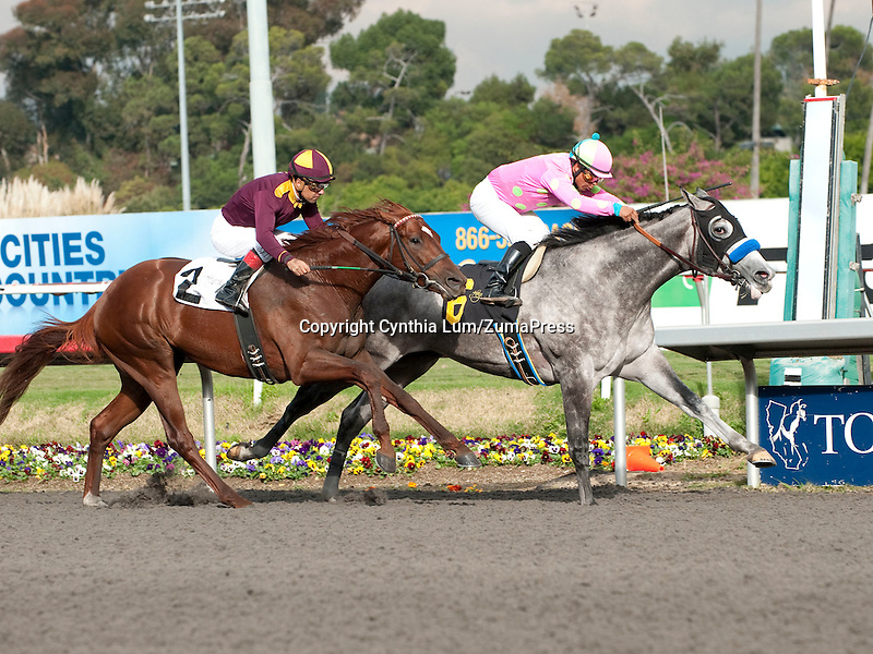 November 24, 2011. So Brilliant, ridden by Martin Garcia wins the Hollywood Prevue Stakes at Hollywood Park, Inglewood, CA