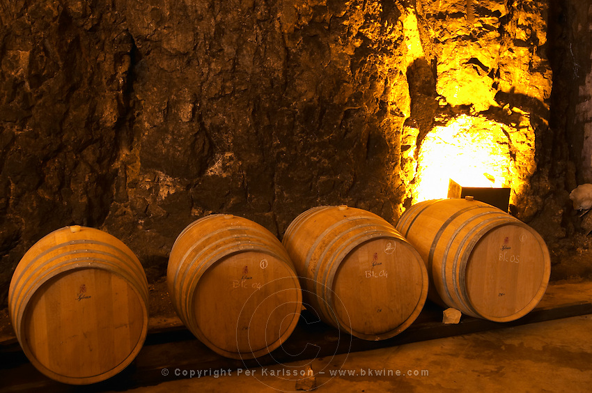 Wooden barrels for fermenting and aging white wine. Chateau Romanin, Saint Remy de Provence, Bouches du Rhone, Provence, France, Europe