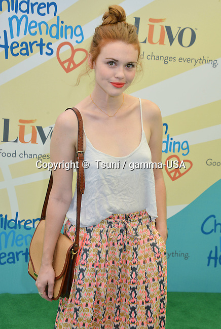 Holland Roden  at the Children Mending Hearts - 2014 in a Private residence in Beverly Hills.
