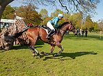Badminton, Gloucestershire, United Kingdom, 4th May 2019, Izzy Taylor riding Springpower during the Cross Country Phase of the 2019 Mitsubishi Motors Badminton Horse Trials, Credit:Jonathan Clarke/JPC Images
