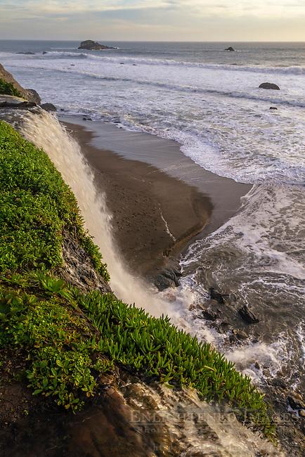 Alamere Falls, Point Reyes National Seashore, Marin County, California