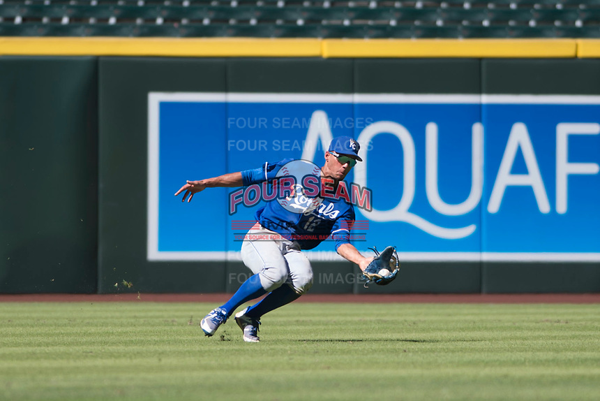 Kansas City Royals left fielder Marten Gasparini (12) makes a sliding catch during an Instructional League game against the Arizona Diamondbacks at Chase Field on October 14, 2017 in Scottsdale, Arizona. (Zachary Lucy/Four Seam Images)