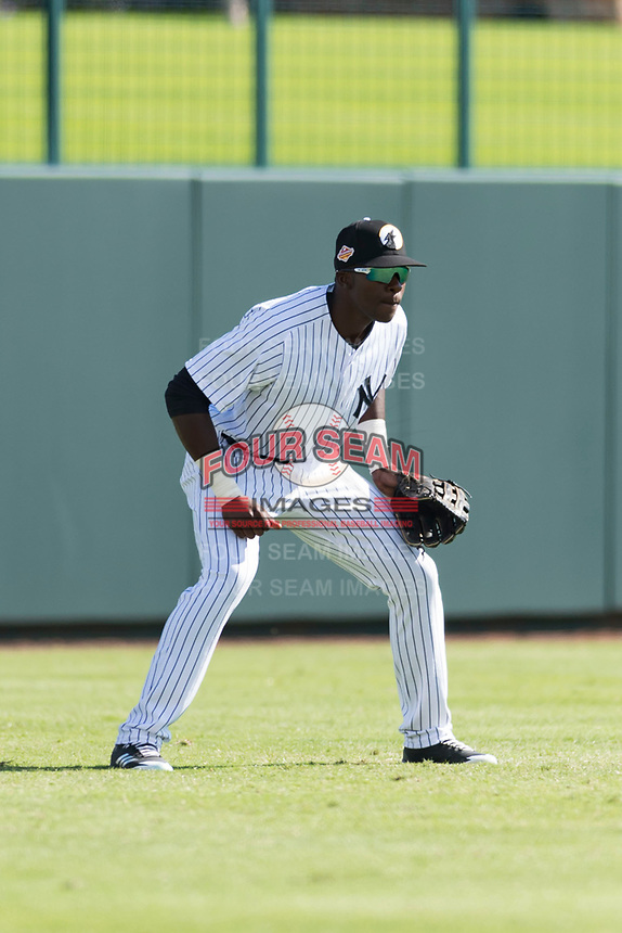 Glendale Desert Dogs left fielder Estevan Florial (13), of the New York Yankees organization, during an Arizona Fall League game against the Scottsdale Scorpions at Camelback Ranch on October 16, 2018 in Glendale, Arizona. Scottsdale defeated Glendale 6-1. (Zachary Lucy/Four Seam Images)