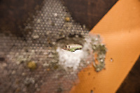 An angler is seen through a bullet hole in a road sign in Wisconsin's Driftless Area near Viroqua.