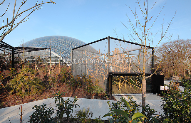 Cage of the Greater bamboo lemur (Prolemur simus) adjoining the Great Glasshouse in the Zone Madagascar, with the Grand Rocher or Great Rock in the background, at the new Parc Zoologique de Paris or Zoo de Vincennes, (Zoological Gardens of Paris or Vincennes Zoo), which reopened April 2014, part of the Musee National d'Histoire Naturelle (National Museum of Natural History), 12th arrondissement, Paris, France. Picture by Manuel Cohen