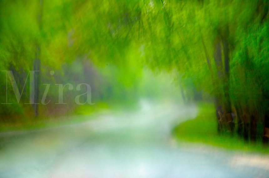 Stormy road<br />