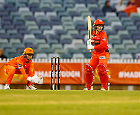 1st November 2019; Western Australia Cricket Association Ground, Perth, Western Australia, Australia; Womens Big Bash League Cricket, Perth Scorchers versus Melbourne Renegades; Tammy Beaumont of the Melbourne Renegades faces up during her innings