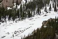 Jeff Deeter pushes up *the Glacier* after leaving the Rohn checkpoint during Iditarod 2008
