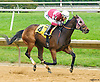Twocubanbrothersu winning at Delaware Park on 10/13/16