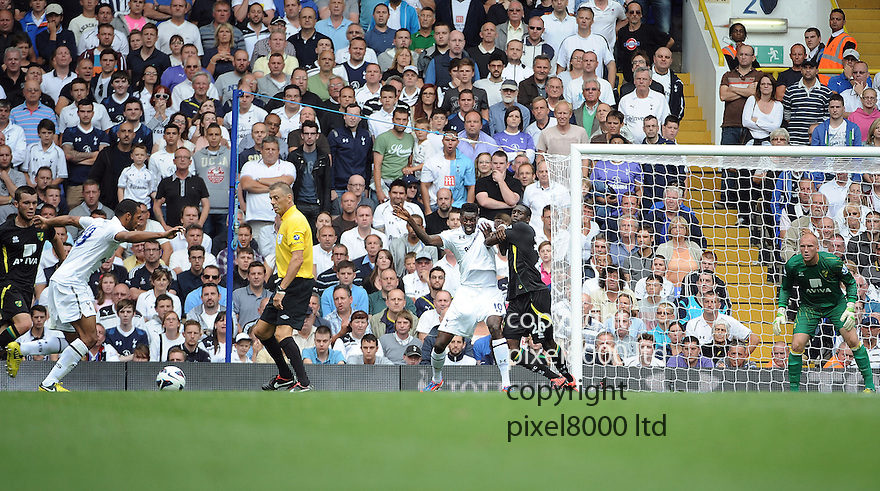 Moussa Demblele of Tottenham Hotspur scores and celebrates in the Barclays Premier League match between Tottenham Hotspur and Norwich City at White Hart Lane on September 1, 2012 in London, England. Picture Zed Jameson/pixel 8000 ltd.