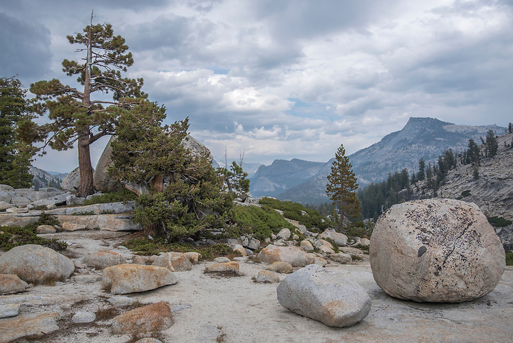 Glacial erratics have been deposited by receding glaciers on the tops of granite domes surrounding Tenaya Lake in Yosemite's high country.