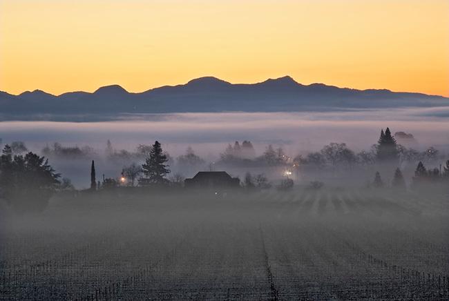 Fog hangs over St. Helena during sunrise