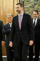Prince Felipe of Spain attends audience with a representation of the Spanish Association of Manufacturers of cars and trucks (ANFAC).January 9 ,2012. (ALTERPHOTOS/Acero) /NortePhoto