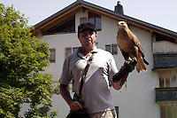Liechtenstein  Malbun  June 2008.Small town high in the Alpine (southeastern)..Falconry Center.The falconer Norman  Vogeli with Harris' Hawk (Parabuteo unicinctus) and tourist.www.galina.li...