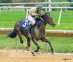10-October 2016 Delaware Park racing