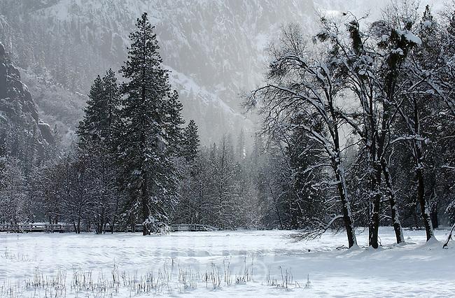 20021220 -- .Michael McCollum.Valley floor in winter in spectacular Yosemite National Park.